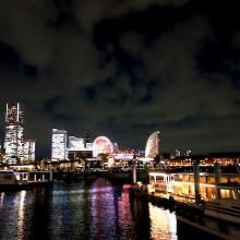 横浜市立動物園の、独立行政法人化検討について。